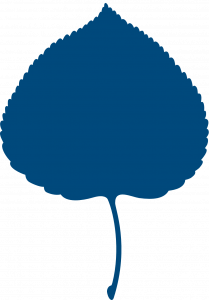 Aspen Institute Leaf Logo